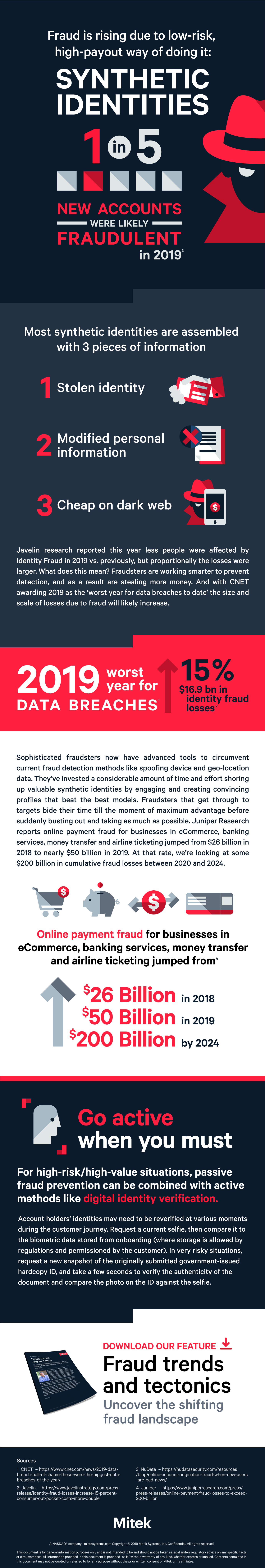 Synthetic Identities Fraud Infographic